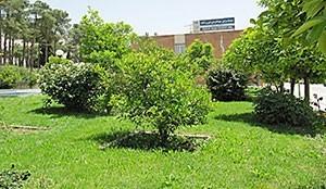 دار الضيافة جهانكردي فيروزاباد