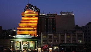 فندق دولي قصر