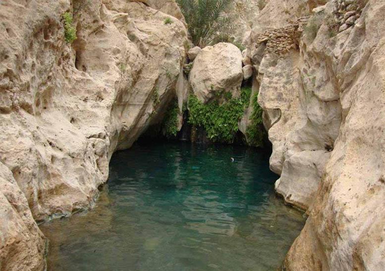 چشمه معدنی پا چنار کرمان