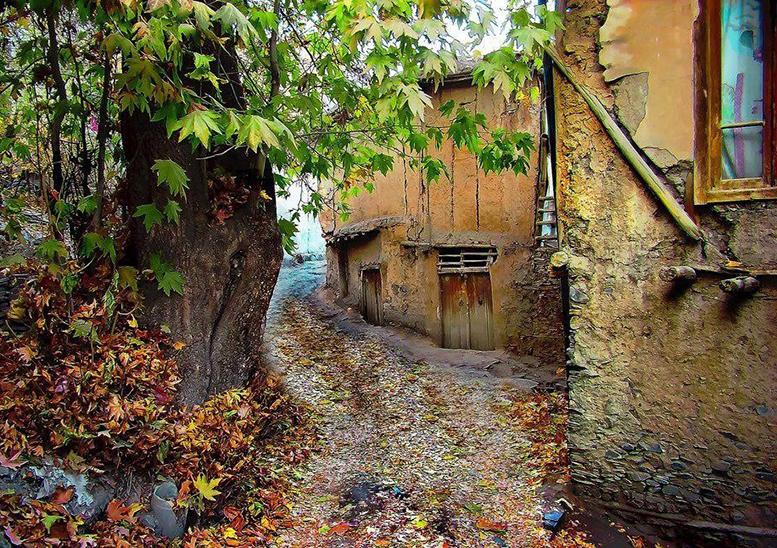جنگل سربرج مشهد