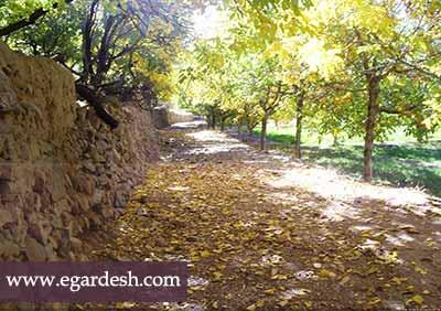 روستای انجدان اراک