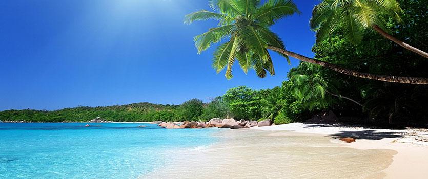 سواحل زیبای دنیا