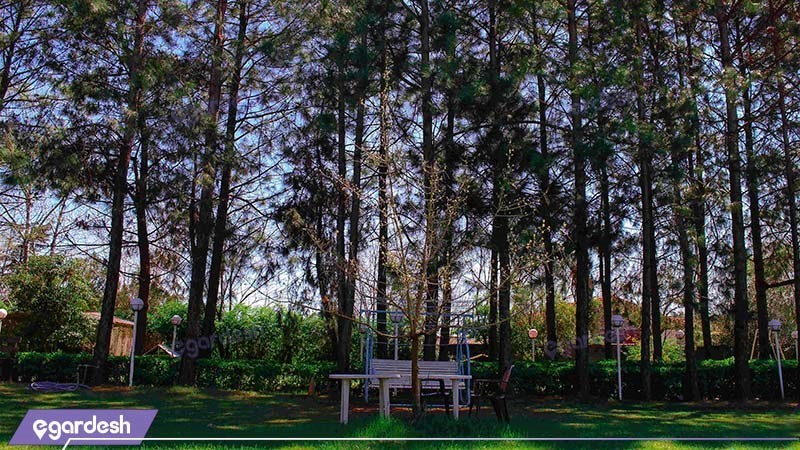 فضای سبز مجتمع اقامتی زیبا کنار
