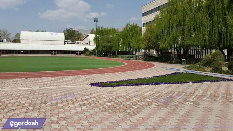 زمین ورزش هتل آکادمی ملی المپیک